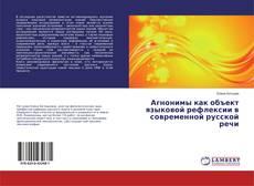 Bookcover of Агнонимы как объект языковой рефлексии в современной русской речи