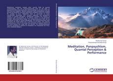 Copertina di Meditation, Panpsychism, Quantal Perception & Performance