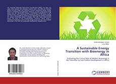 Bookcover of A Sustainable Energy Transition with Bioenergy in Africa