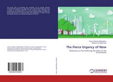 Bookcover of The Fierce Urgency of Now