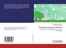 Capa do livro de The Fierce Urgency of Now