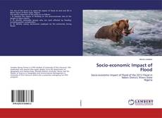 Bookcover of Socio-economic Impact of Flood