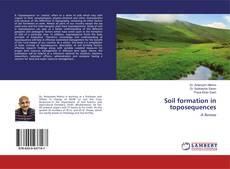 Bookcover of Soil formation in toposequences