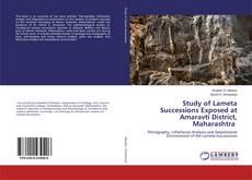 Study of Lameta Successions Exposed at Amaravti District, Maharashtra kitap kapağı