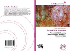 Couverture de Schaffer Collateral