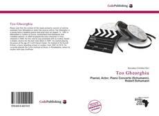 Portada del libro de Teo Gheorghiu