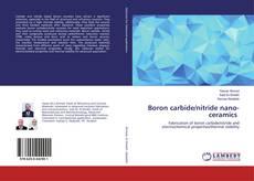 Обложка Boron carbide/nitride nano-ceramics