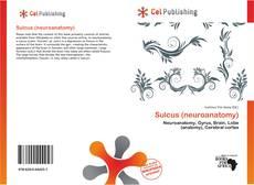 Capa do livro de Sulcus (neuroanatomy)