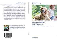 Bookcover of Bindungsgeleitete Interventionen