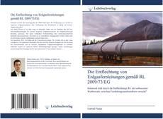 Couverture de Die Entflechtung von Erdgasfernleitungen gemäß RL 2009/73/EG