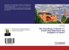 Bookcover of The Two Kings in Daniel 11: Could They Represent the Kingdom of Islam?