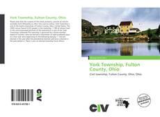 Buchcover von York Township, Fulton County, Ohio