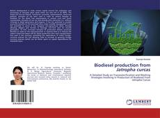 Bookcover of Biodiesel production from Jatropha curcas