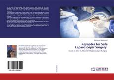 Bookcover of Keynotes for Safe Laparoscopic Surgery