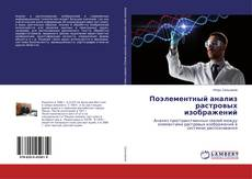 Bookcover of Поэлементный анализ растровых изображений