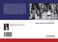 Copertina di Brain iodine metabolism