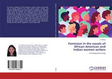 Buchcover von Feminism in the novels of African American and Indian women writers