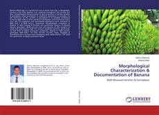 Bookcover of Morphological Characterization & Documentation of Banana