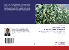 CONSERVATION AGRICULTURE IN MAIZE kitap kapağı