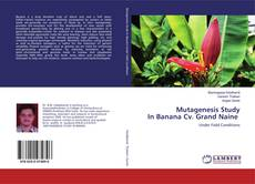 Bookcover of Mutagenesis Study In Banana Cv. Grand Naine