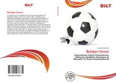 Bookcover of Boštjan Cesar