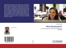 Bookcover of Why Devaluation?
