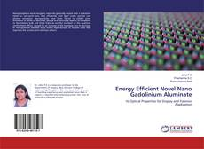 Bookcover of Energy Efficient Novel Nano Gadolinium Aluminate