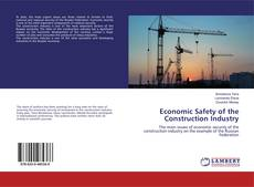 Economic Safety of the Construction Industry的封面