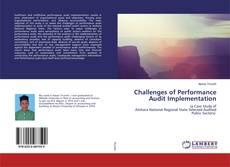 Challenges of Performance Audit Implementation的封面