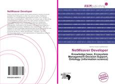 Capa do livro de NetWeaver Developer