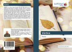 Bookcover of Vórtice