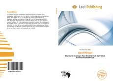 Buchcover von Axel Witsel