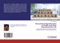 Обложка Educational Apprehension of Pupils and Their Expressionistic Life