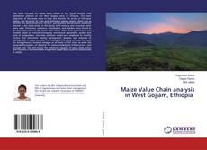 Maize Value Chain analysis in West Gojjam, Ethiopia kitap kapağı