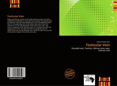 Bookcover of Testicular Vein
