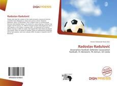 Radoslav Radulović kitap kapağı