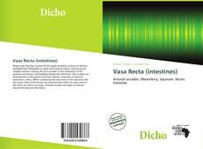 Vasa Recta (intestines) kitap kapağı