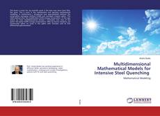 Bookcover of Multidimensional Mathematical Models for Intensive Steel Quenching