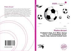 Bookcover of Pietro Arcari