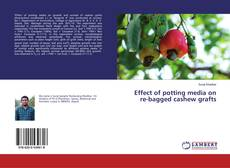 Borítókép a  Effect of potting media on re-bagged cashew grafts - hoz