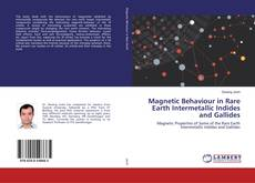 Bookcover of Magnetic Behaviour in Rare Earth Intermetallic Indides and Gallides