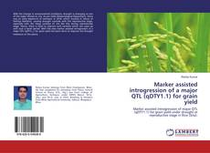 Bookcover of Marker assisted introgression of a major QTL (qDTY1.1) for grain yield
