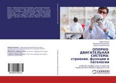 Bookcover of ОПОРНО-ДВИГАТЕЛЬНАЯ СИСТЕМА: строение, функции и патологии