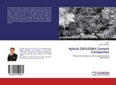 Hybrid CNTs/GNPs Cement Composites kitap kapağı
