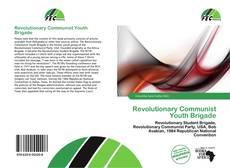 Copertina di Revolutionary Communist Youth Brigade