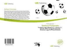 Bookcover of Stefano Fortunato