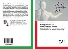 Bookcover of Nanoparticelle con l'aggregazione indotta