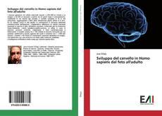 Sviluppo del cervello in Homo sapiens dal feto all'adulto的封面
