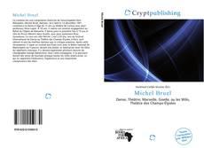 Portada del libro de Michel Bruel