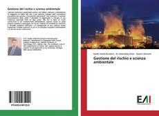 Обложка Gestione del rischio e scienza ambientale